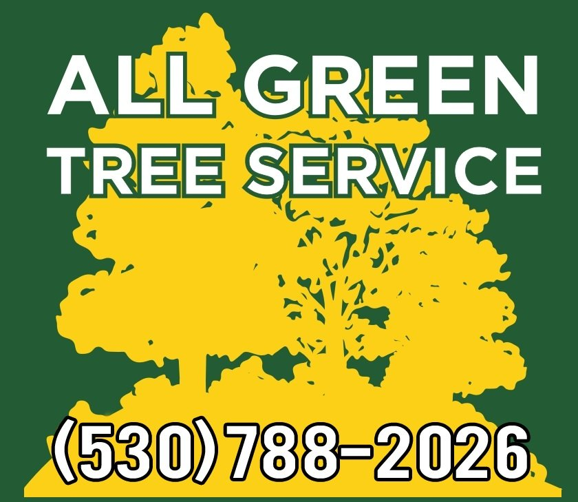 All Green Tree Service