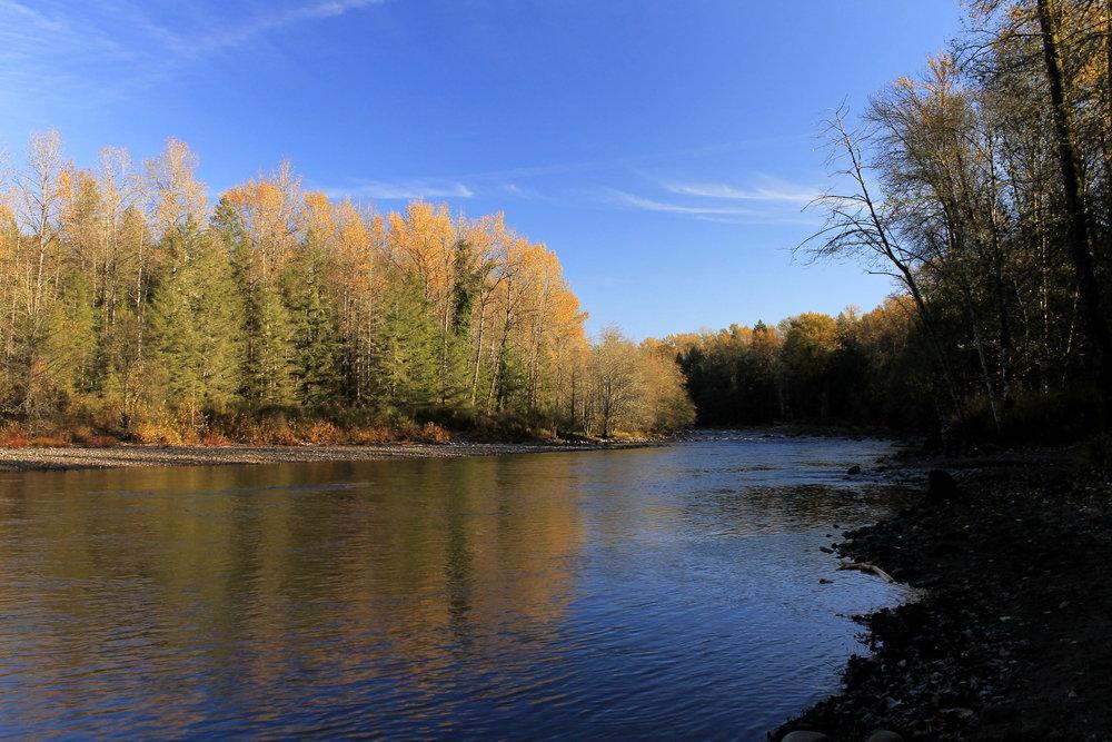 Hike 5: Sandy River Park