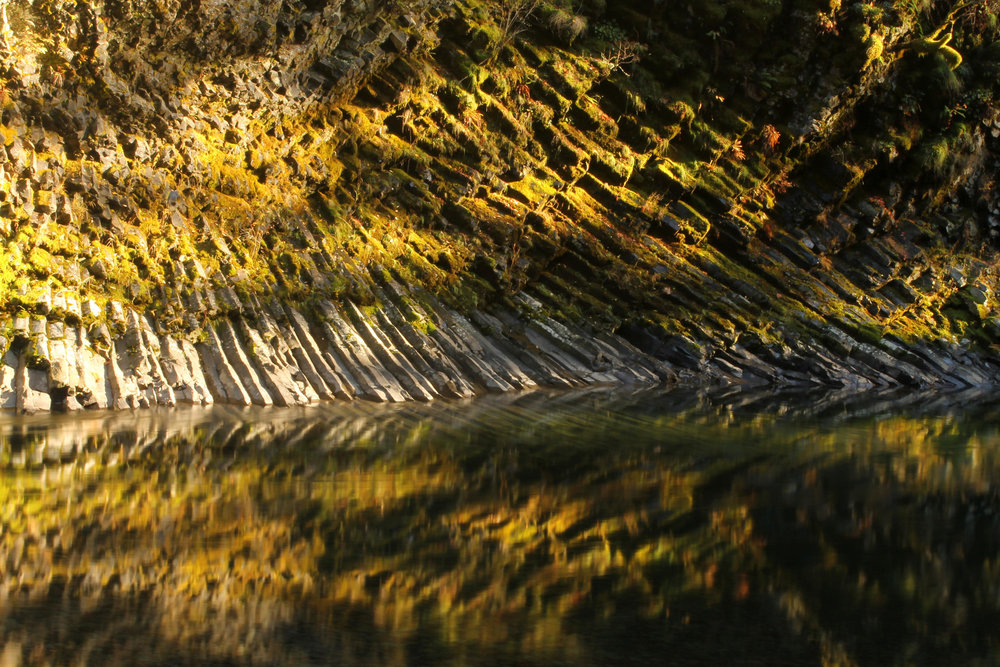 Hike 6: Molalla River Trails Loop
