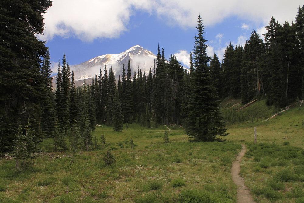 Hike 16: Riley Creek Meadows