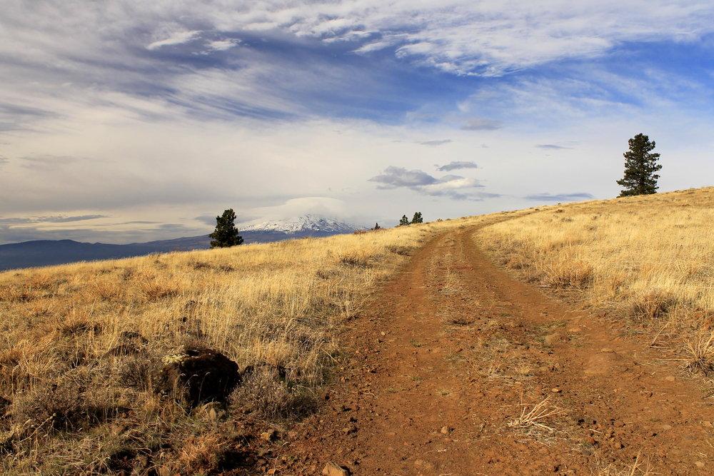 Hike 17: Grayback Mountain