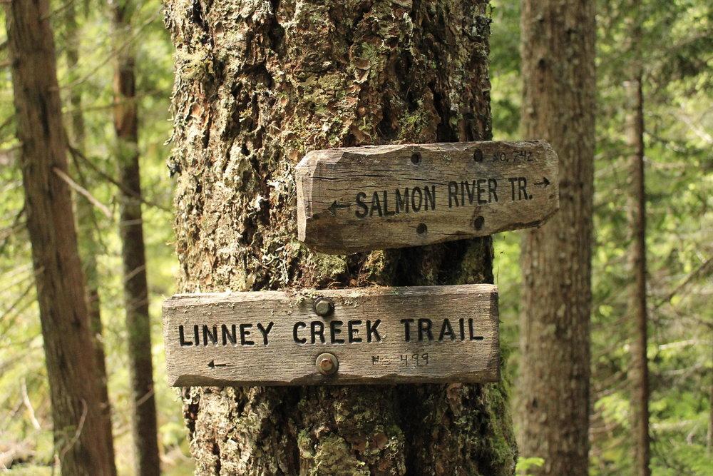 Hike 25: Upper Salmon River