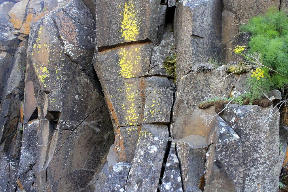 Hike 23: Swale Canyon