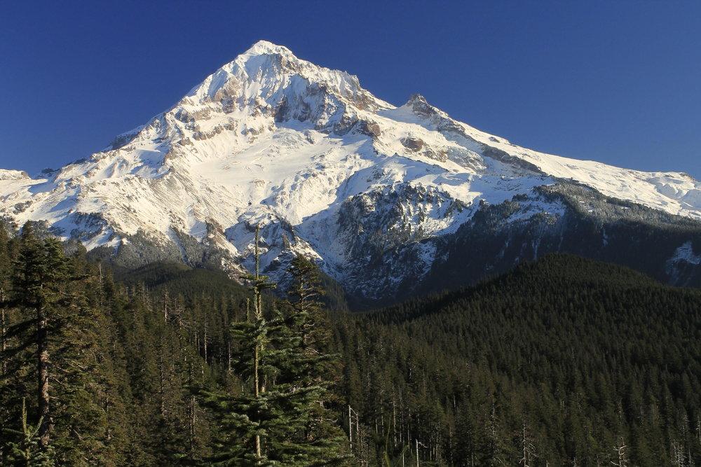 Hike 27: Bald Mountain and Muddy Fork