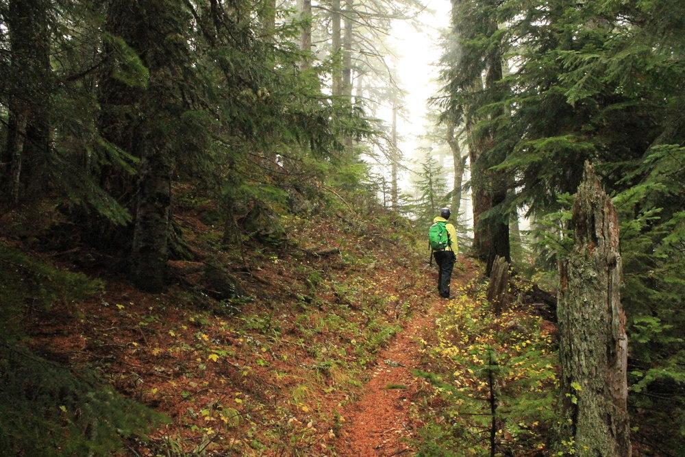 Hike 38: Fish Creek Mountain