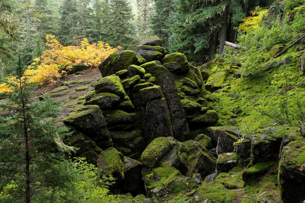 Hike 40: Thunder Mountain and Skookum Lake
