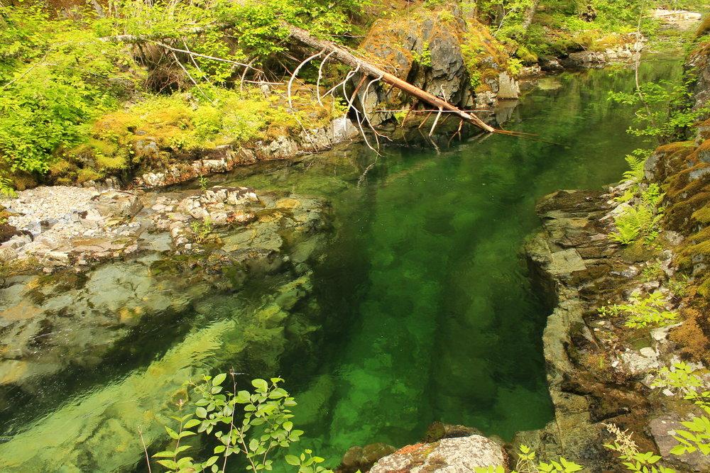 Hike 43: Elk Lake Creek
