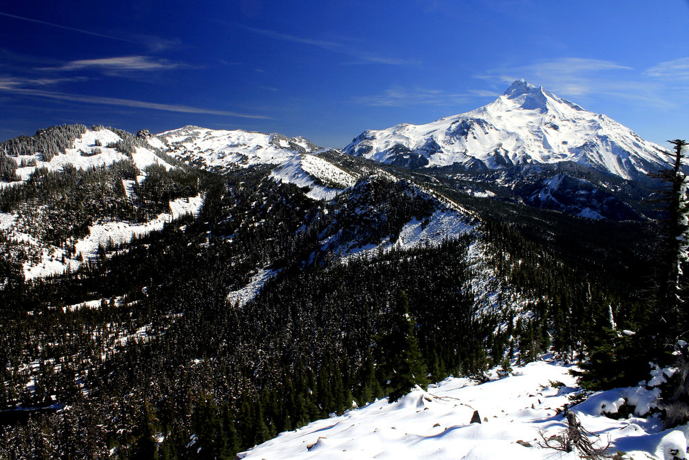 Hike 48: Bear Point