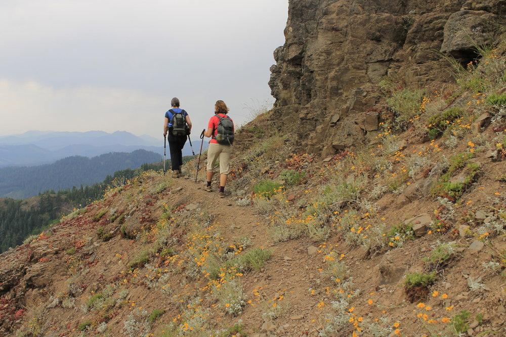 Hike 49: Bachelor Mountain via Bugaboo Ridge