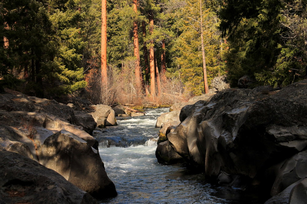 Whychus Creek, south of Sisters, Oregon
