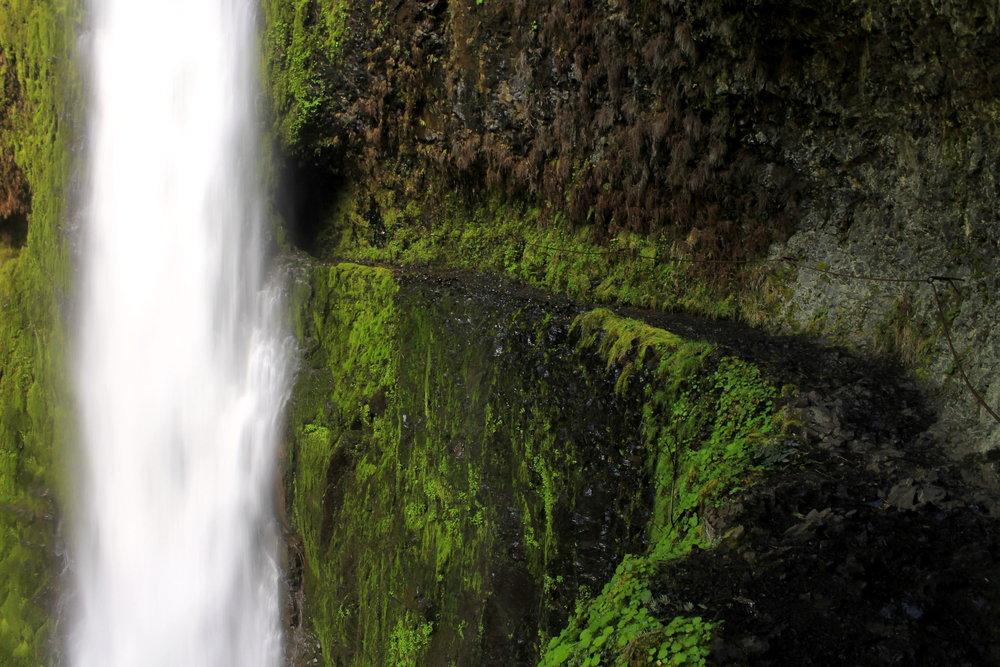 Tunnel Falls on the Eagle Creek Trail. This trail is currently closed due to fire damage and is expected to remain closed for several more years.