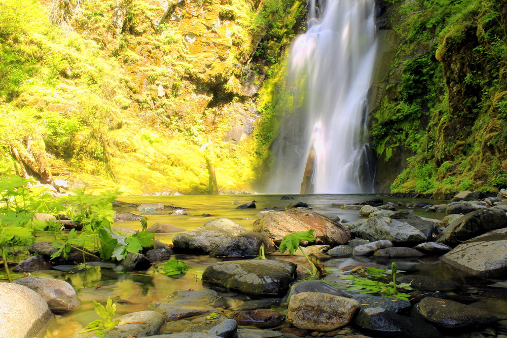 Chinook Falls is a logical stopping point on the Siouxon Creek Trail.
