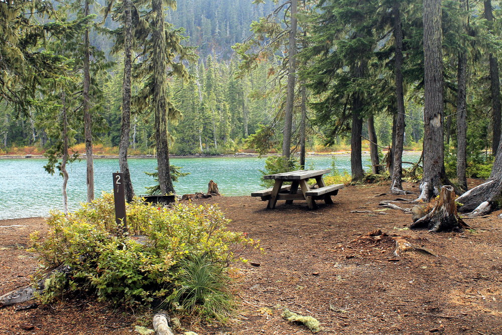 Horseshoe Lake's small campground. To get here you have to drive a terrible stretch of the Skyline Road, or backpack from Olallie or Monon Lakes.