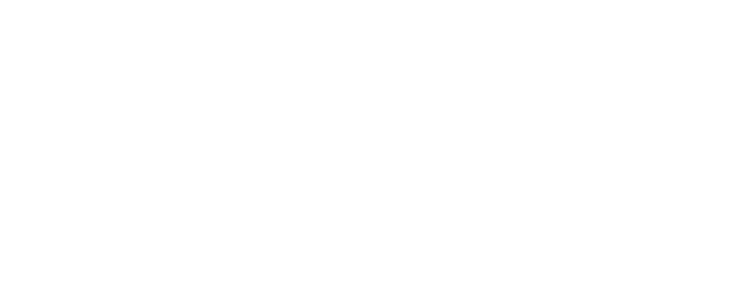 Hired Gun Nightclub & Bar Consulting