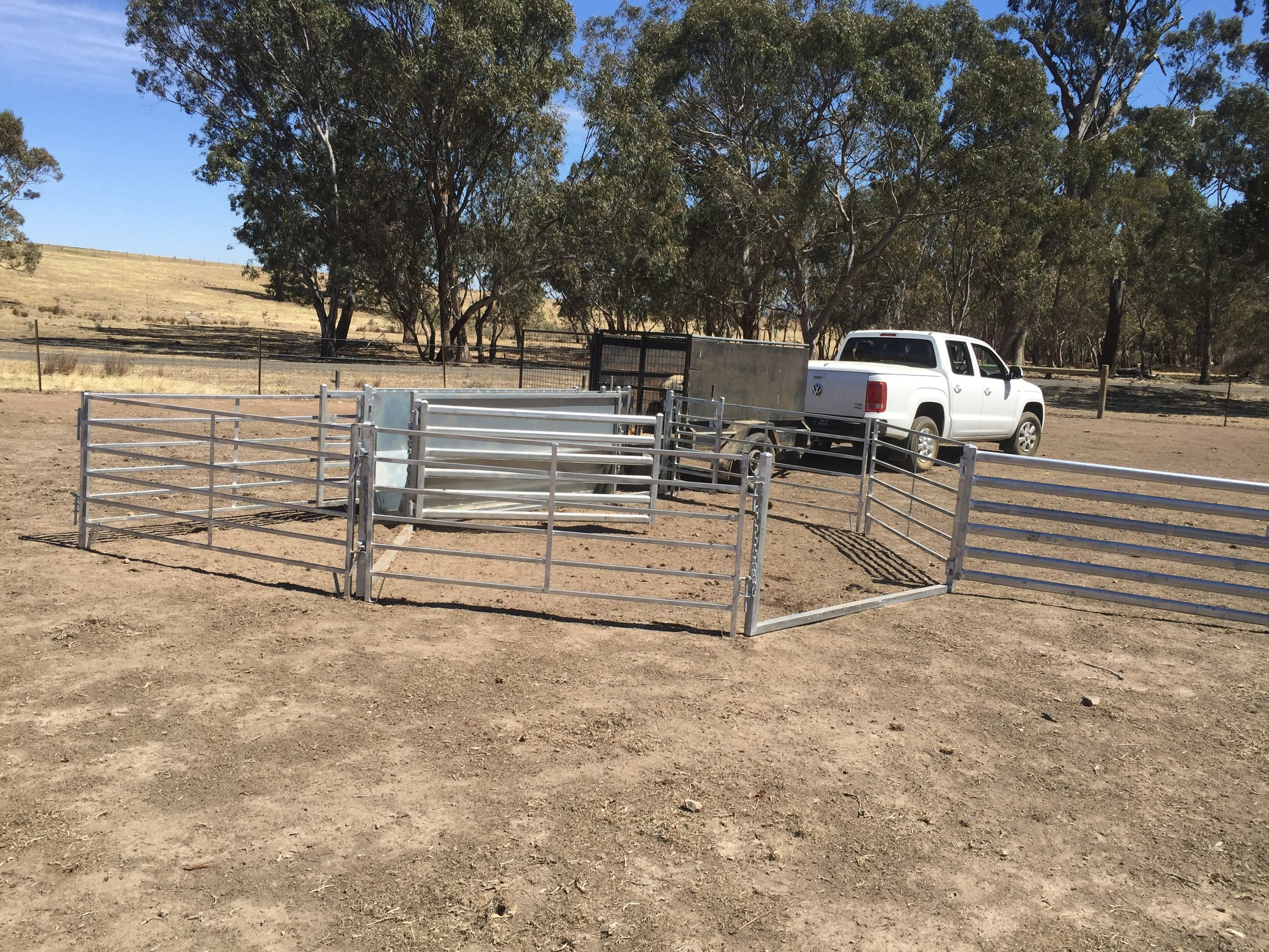 Portable yards that can be used for pigs and sheep.