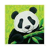 panda_bear_170.jpg