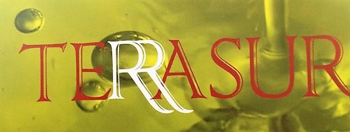 Terrasur-logo.jpg