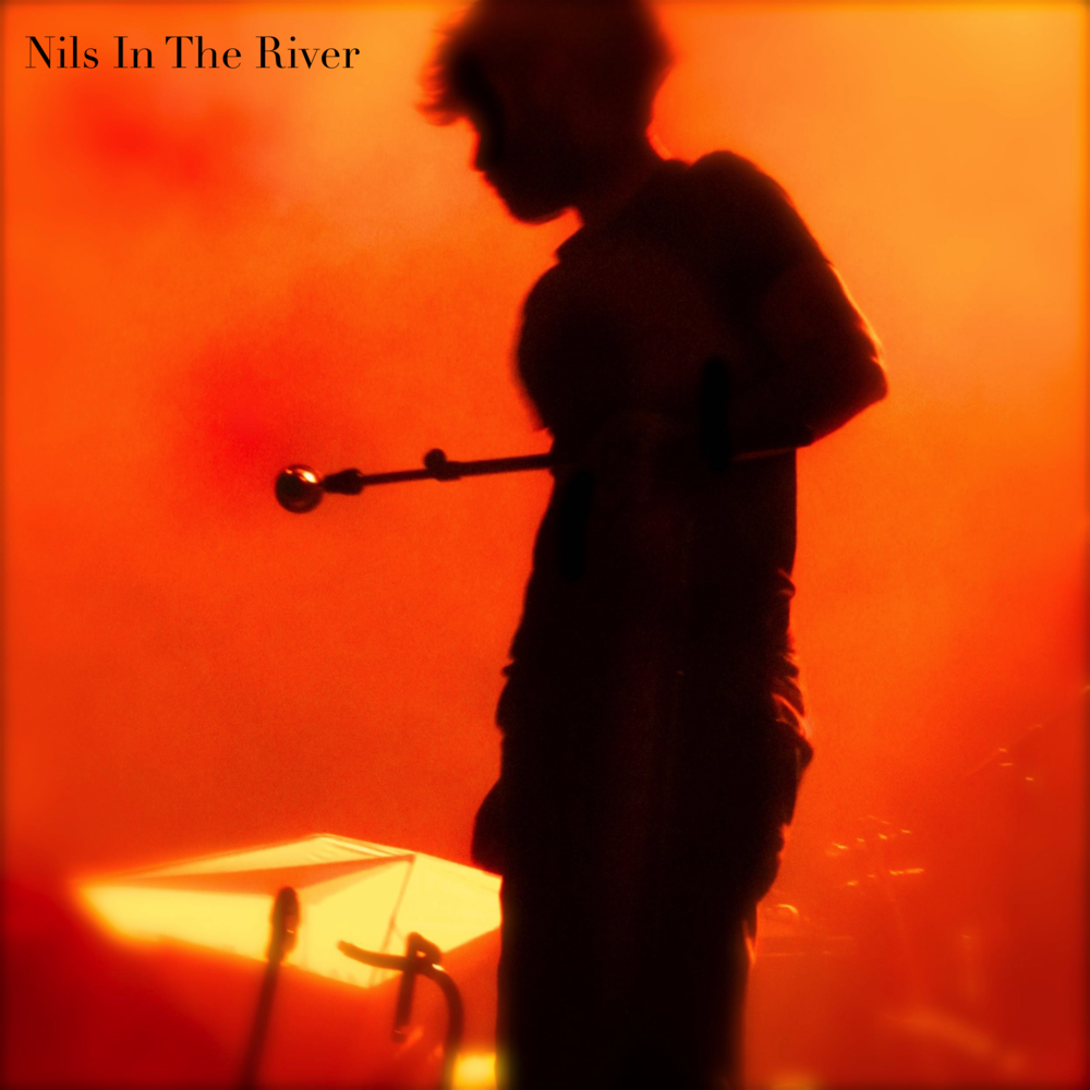 Nils In The River - TIME: 21:00STAGE: BLUE ROOMVIEW PROGRAM