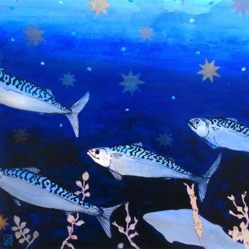 Penobscot Study I (Mackerel)