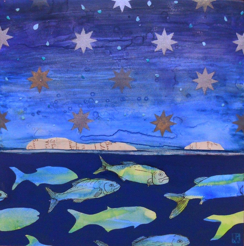 Penobscot Sudy II (Bluefish)