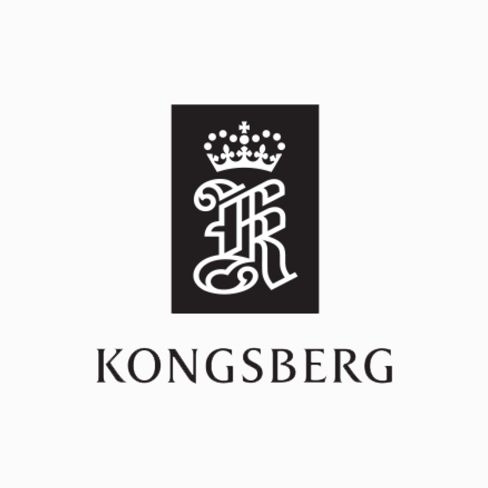 Kundelogoer for Besseberg as.png