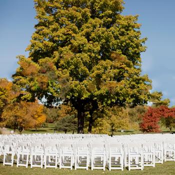 wedding-1.png