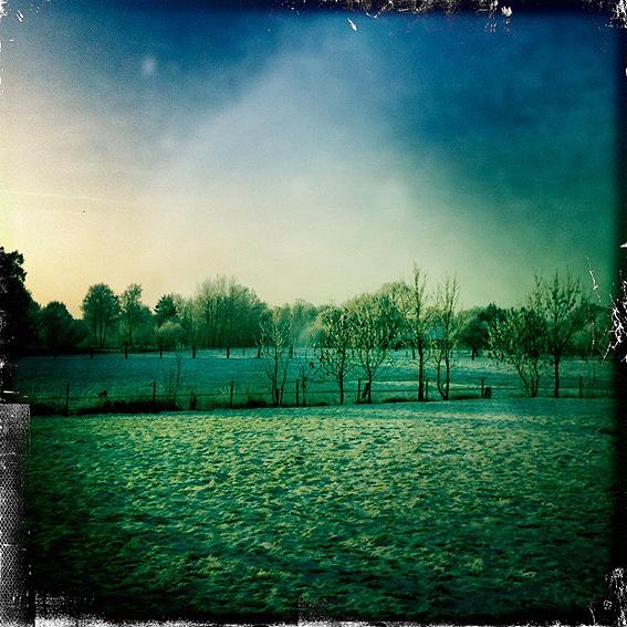 Wingst-Winter-2.jpg