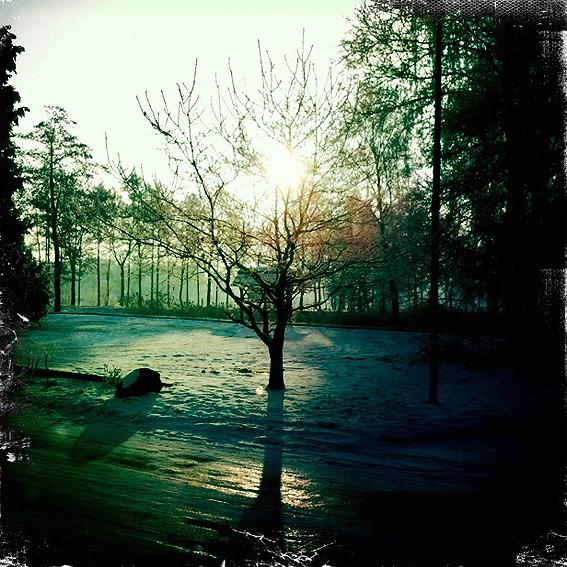 Wingst-Winter-1.jpg