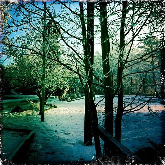 Wingst-Winter-3.jpg