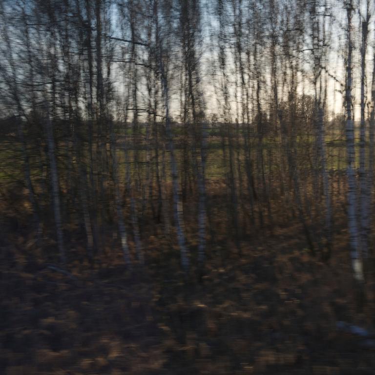 landscape4-quadrat.jpg
