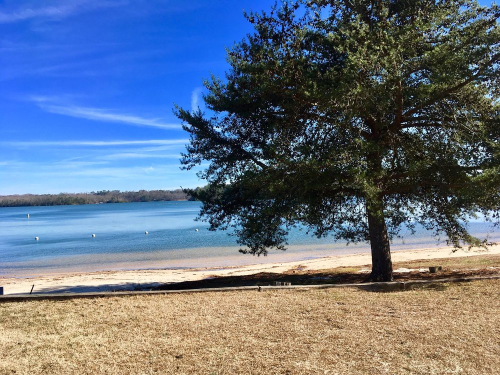 Swim area - Swim in the Lake! We have a sandy beach sitting on the shore of Lake Sidney Lanier. Please no grills on the beach. (No Lifeguard on Duty, Swim at your own Risk)