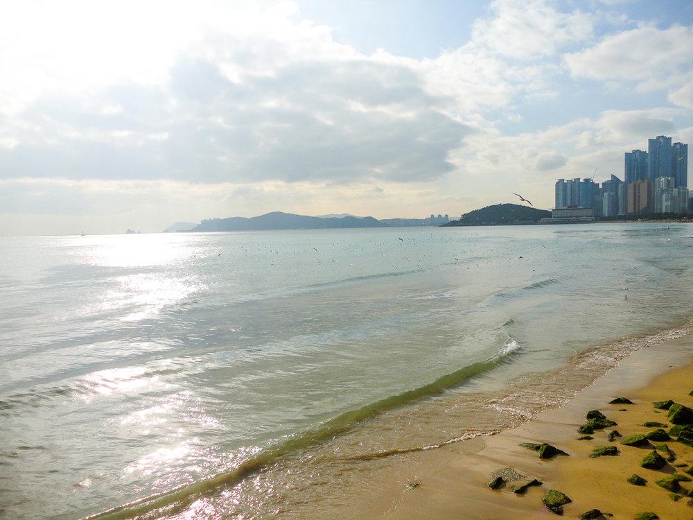 CM_beachPPb_2012_01.jpg