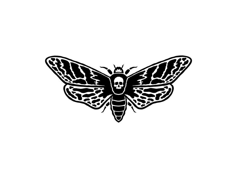 Studio Freight - Skull Moth Illustration