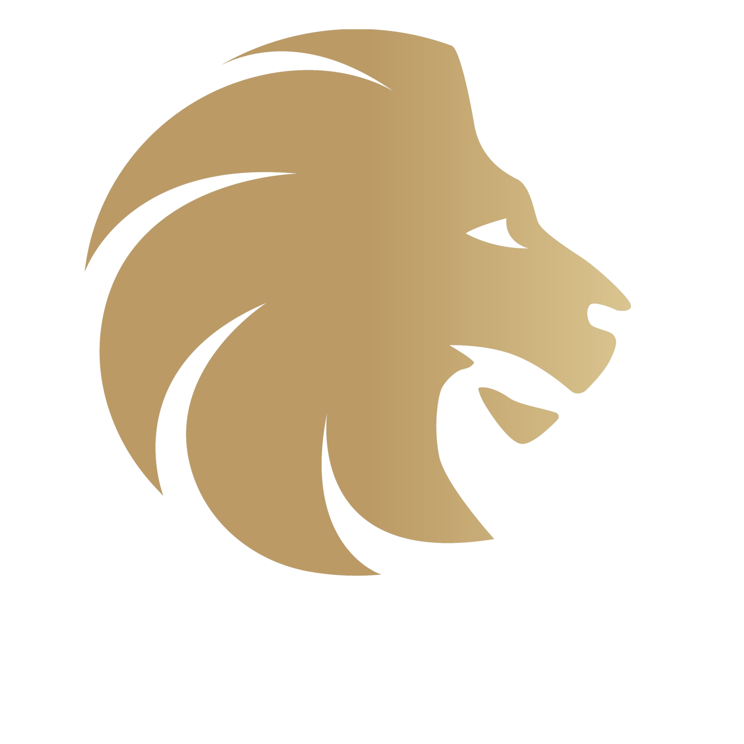 Elite Project Group