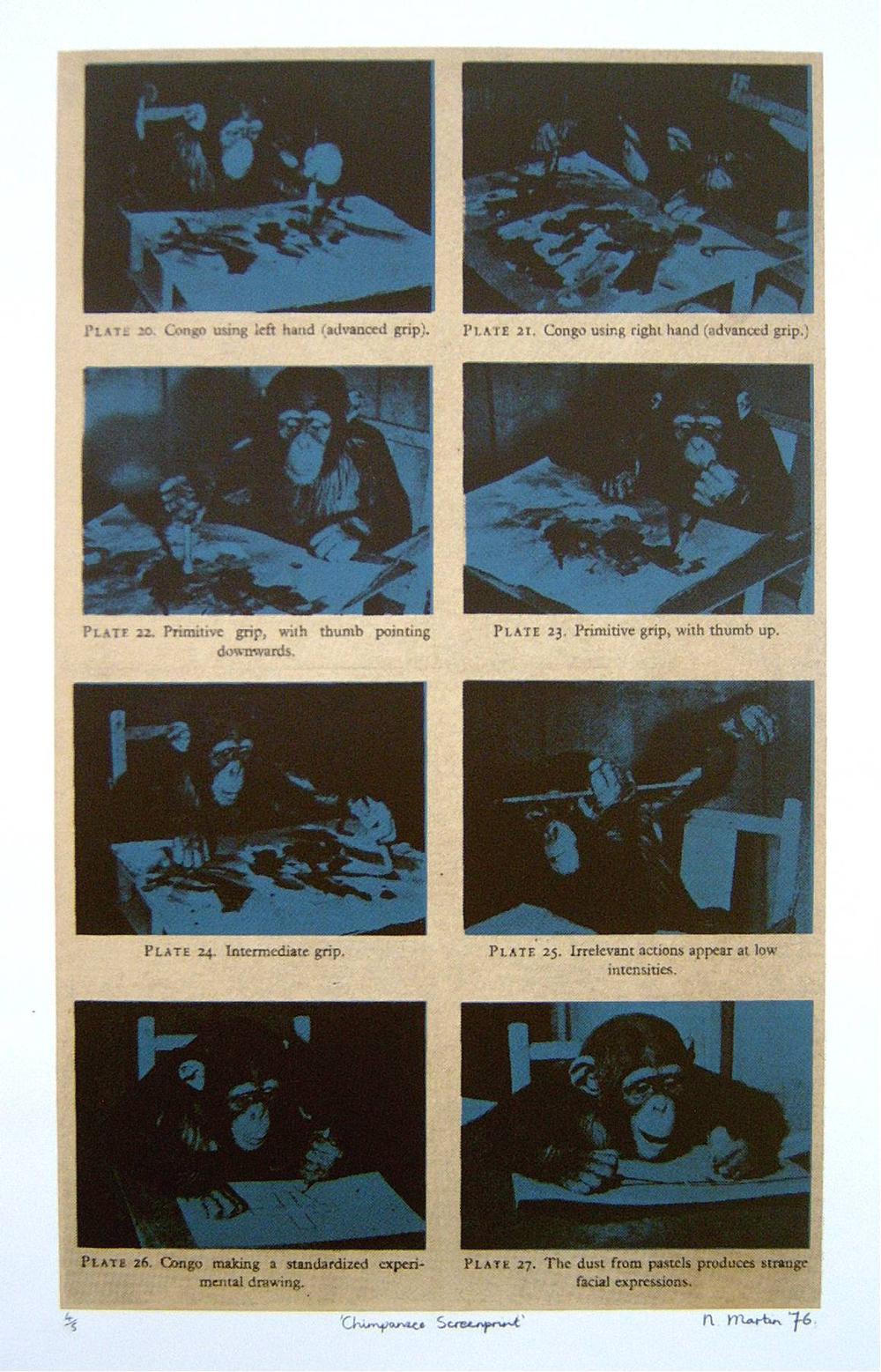 Chimpanzee Screenprint (4/5)