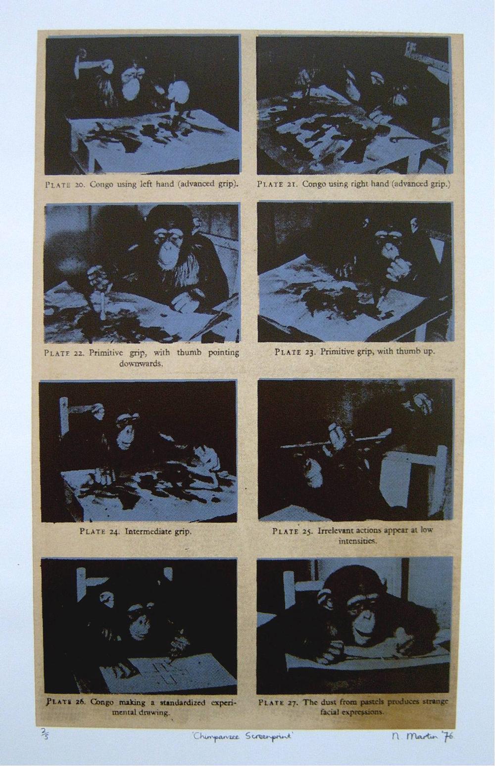 Chimpanzee Screenprint (2/5)