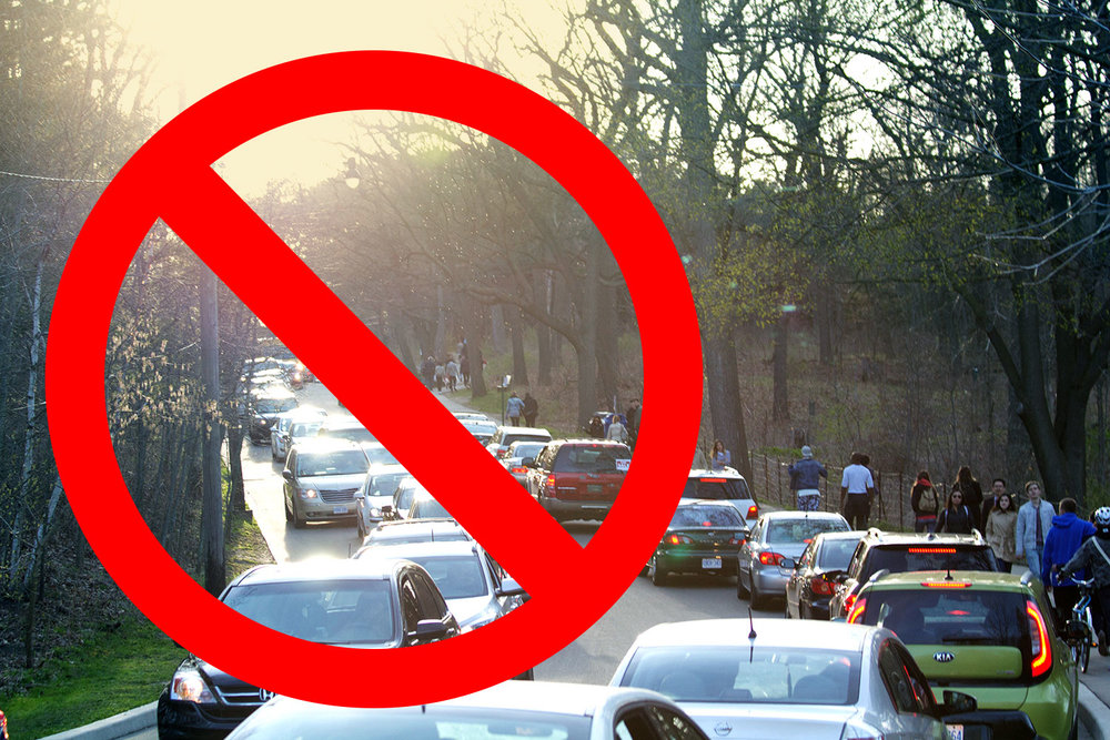 NO VEHICLE ACCESS IN HIGH PARK DURING PEAK BLOOM - Changes aim to increase public safety and ease traffic congestion both in the park and surrounding neighbourhood.