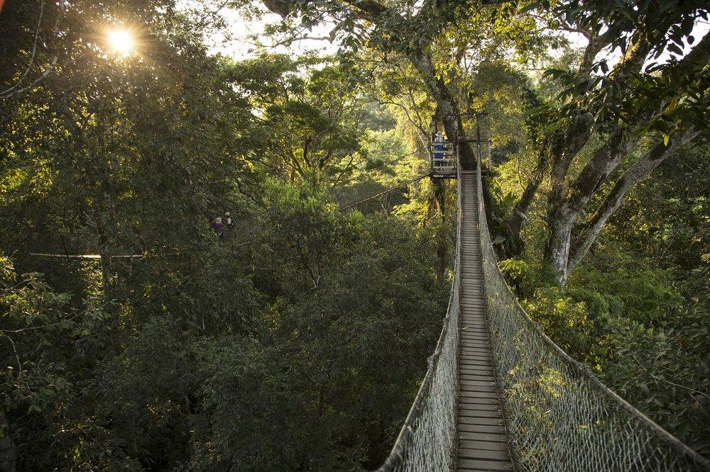 PERU' AMAZZONIA.jpg