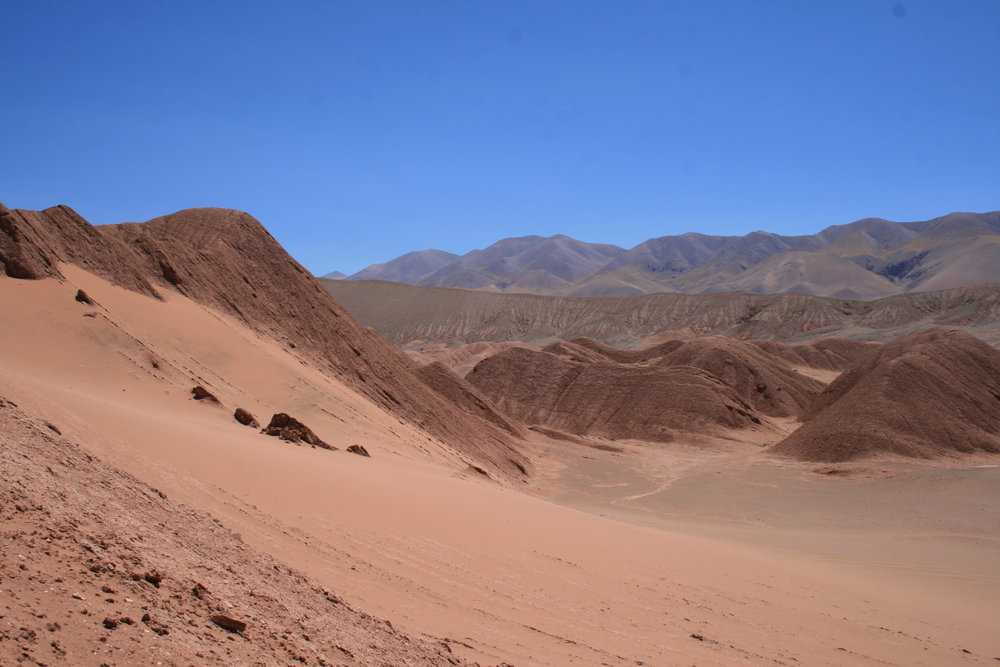 PUNA ARGENTINA DESERTO LABIRINTO.JPG