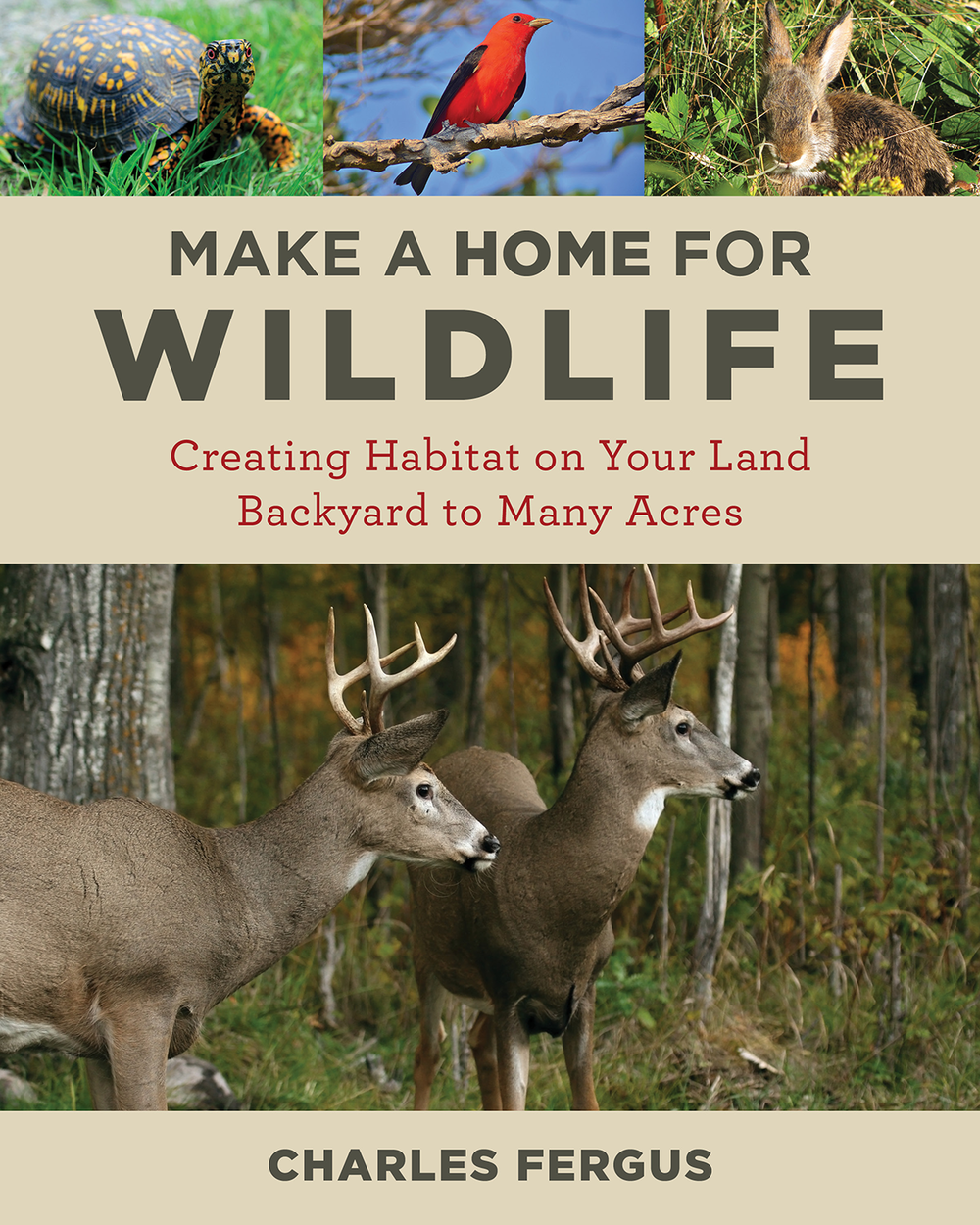 Make a Home for Wildlife Cover