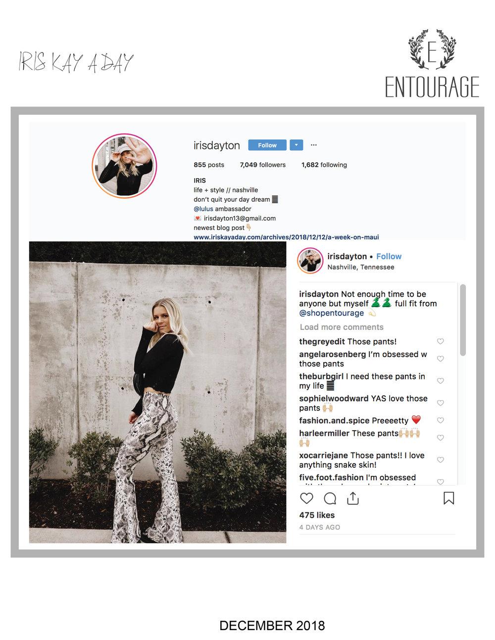 Entourage_IrisDayton_December2018.jpg