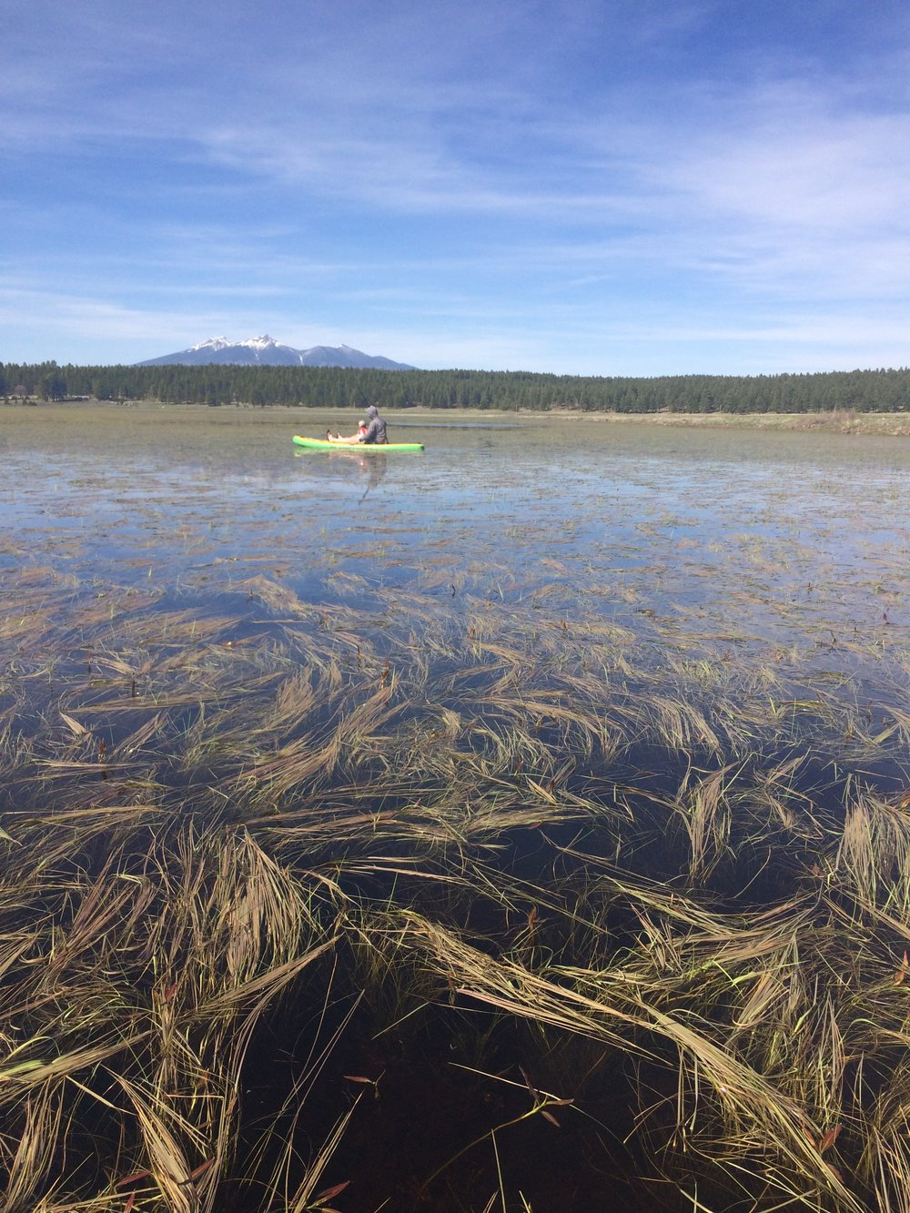 Rogers Lake periodically fills up with enough water to take out a kayak or canoe.