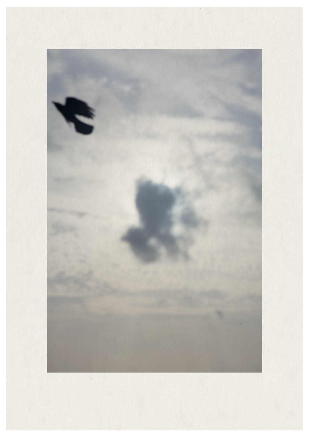 Crow3.jpg