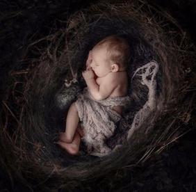 VINTAGE CHIC- New Born - Art - New Born Photography