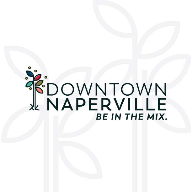 dtnaperville_logo.jpg