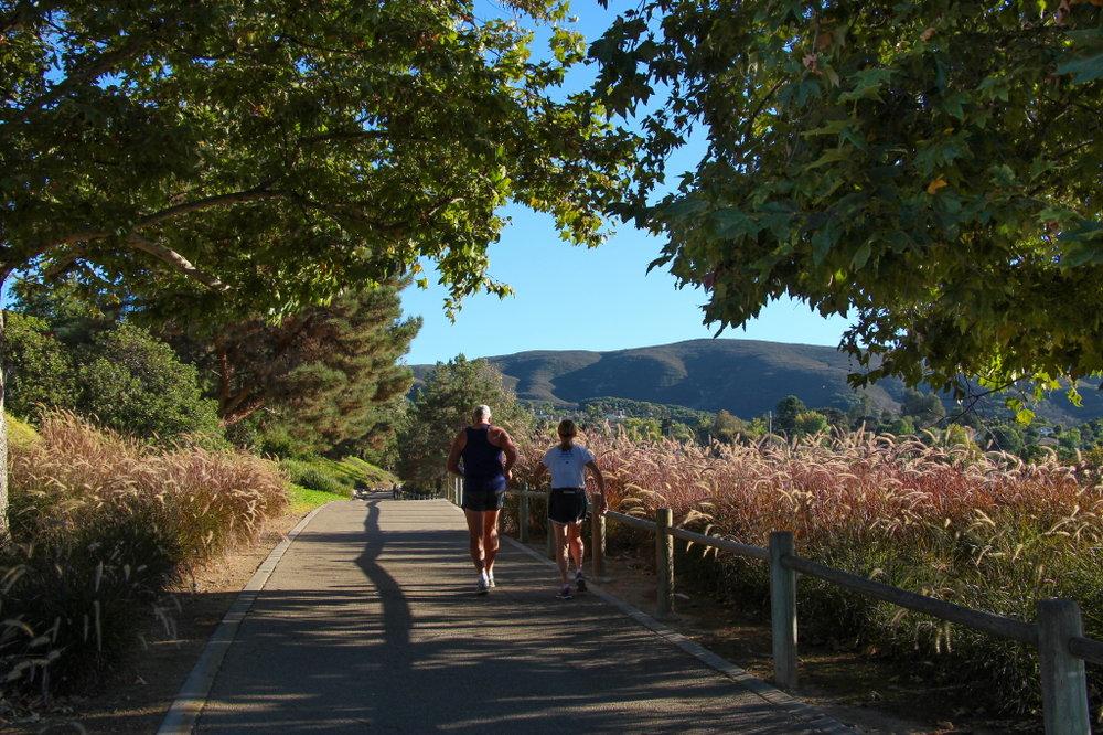Jogging_Discovery_Creek_Trail.jpeg