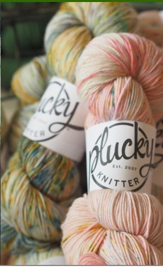 Plucky Knitter Party, My Sister Knits, Plucky Knitter yarn, Fort Collins, yarn