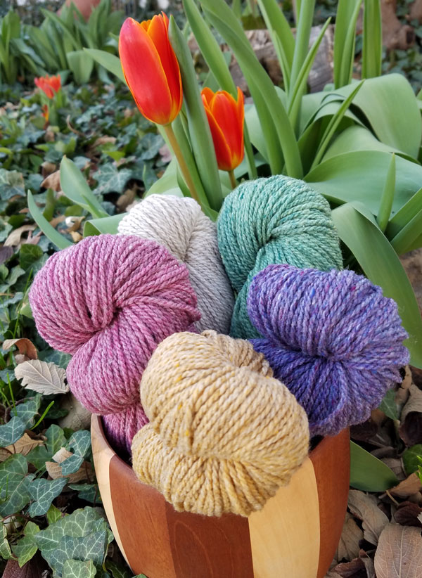My Sister Knits, northern Colorado, spring knitting, Mewesic