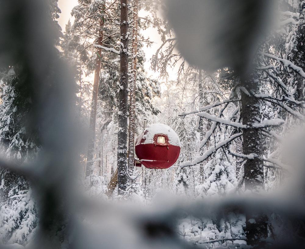 Tree hut hotel - Näsets Markusgården.
