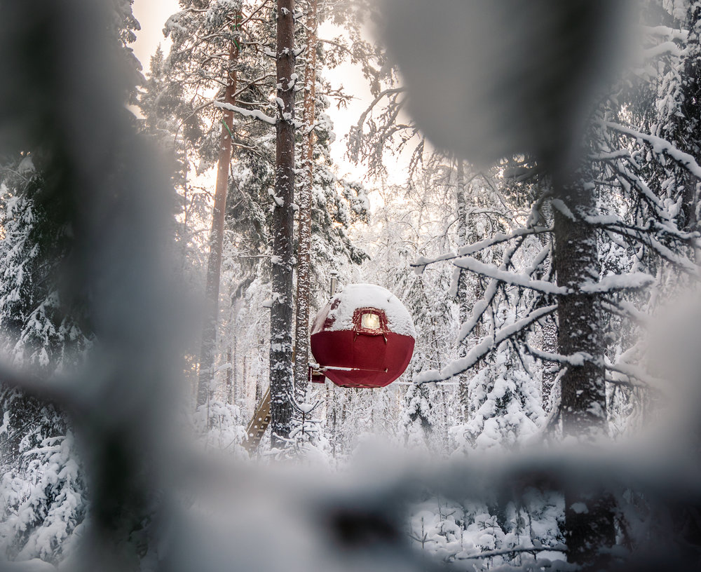 treehouse_viggo_lundberg (2 av 24).jpg